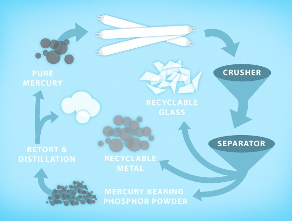 lamp-recycling-infographic.jpg
