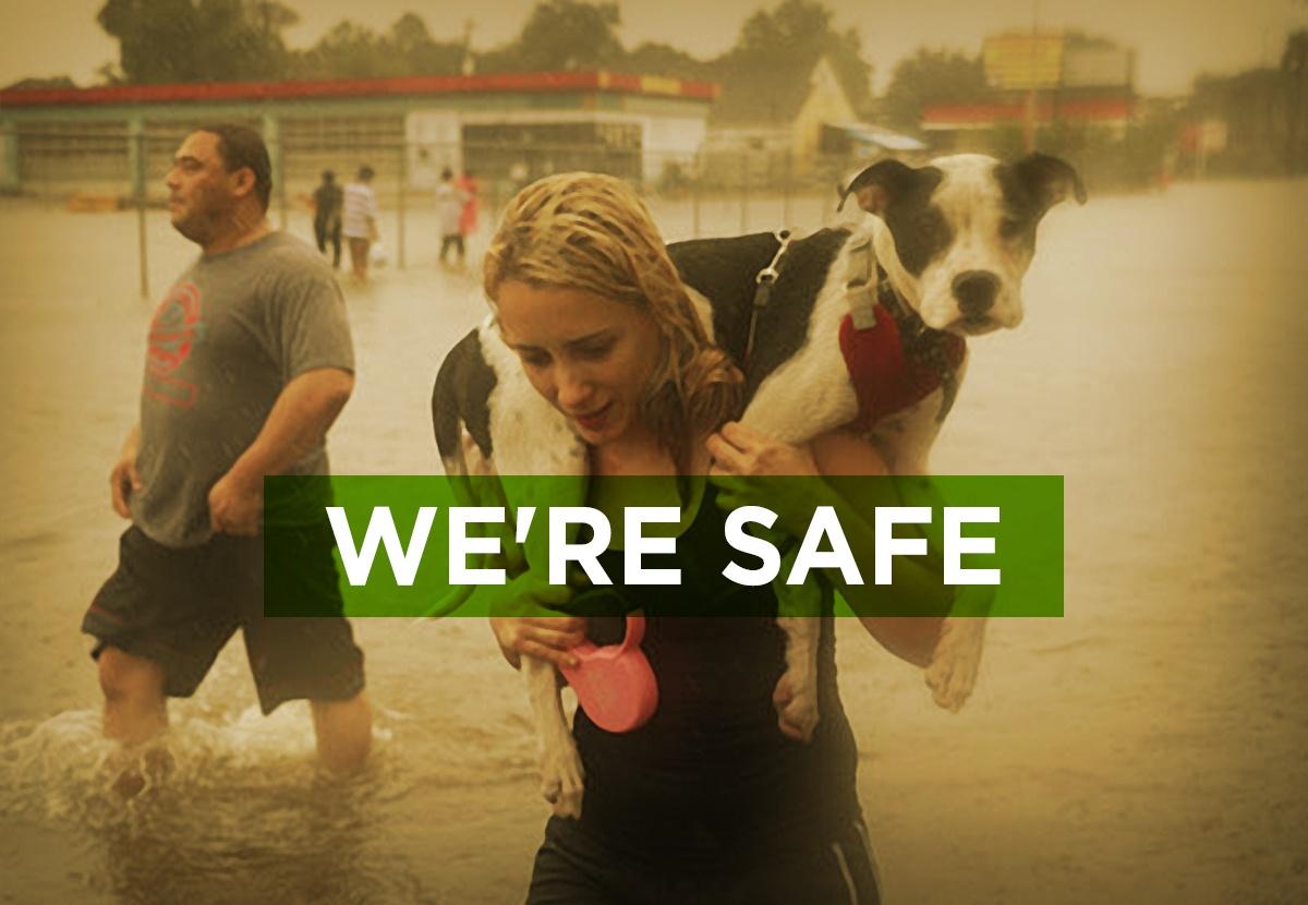 Were_Safe.jpg